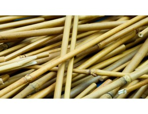 Long Bamboo Sticks (500g)