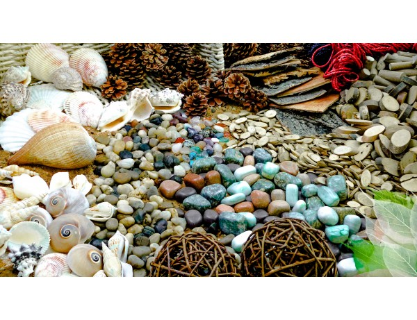 Natural Exploration Treasure Basket