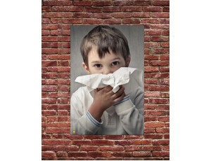 Wall Posters - A2 Hygiene (Set of 6)