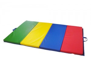 Foldable Mat - Great in Primary School for Gyms!