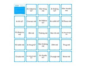 Irregular Verbs - Robotics Grid Cards (for Bee Bot + Blue Bot)