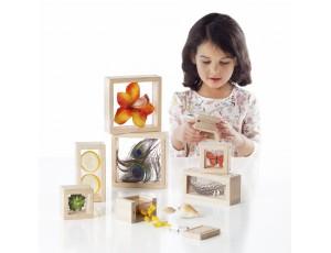Treasure Blocks - Clear