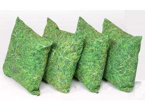 SET 4 GRASS SCATTER CUSHIONS