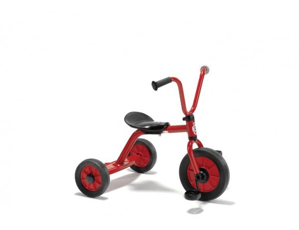 Tricycle Small (2-4 Years)